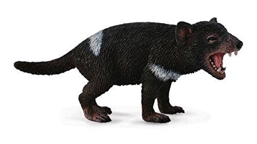 タスマニアデビル (動物)